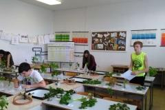 zahradkari (3)