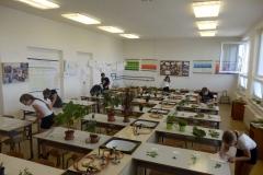 mlady_zahradkar (3)