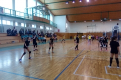 volejbal (3)