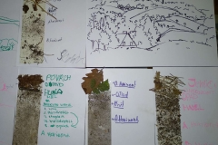 geologie9 (9)