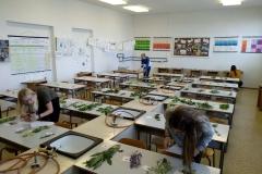 Zahradkar (3)