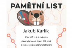 Karlik1